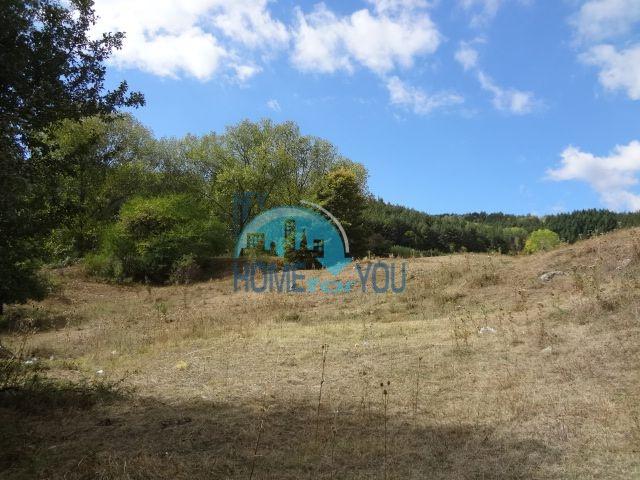 Продажа земельного участка в дачной зоне Софии