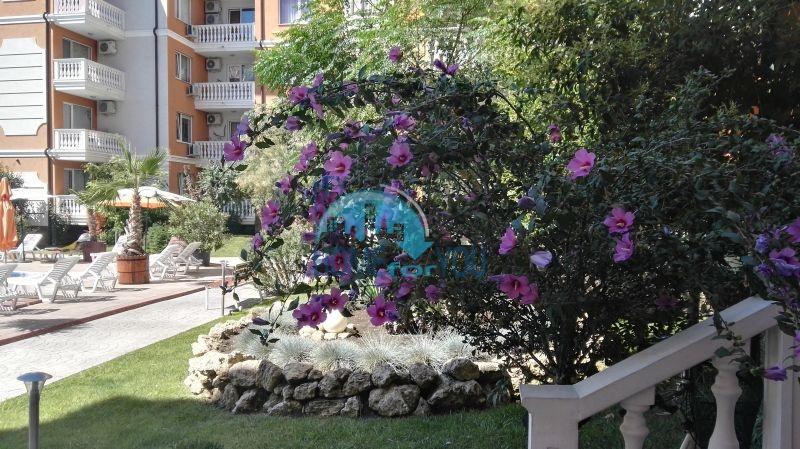 Недорогая четырехкомнатная квартира на Солнечном берегу 20