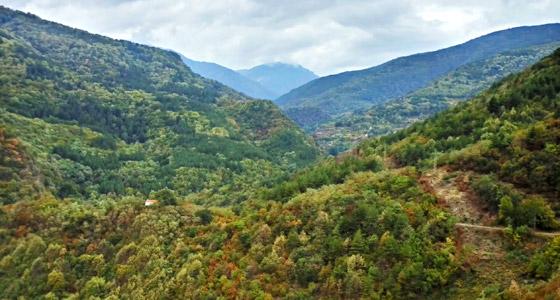 Видео каталог о Болгарии