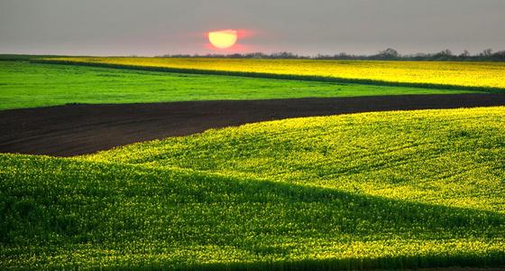 Единый регистр сельхоз земель в Болгарии