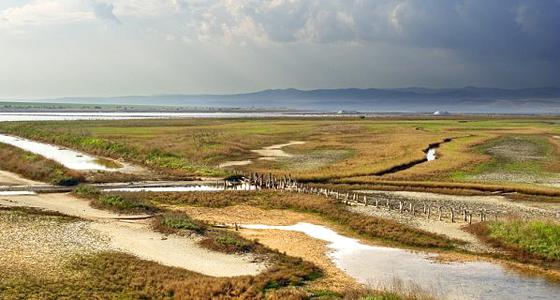 Эко проект - восстановление лагуны Атанасовского озера